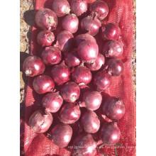 Exportar nueva cosecha buena calidad competitiva 3-5cm cebolla roja