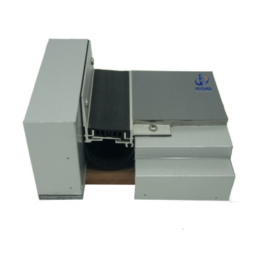 Marble Floor Concrete Thermal Rubber Expansion Joint Covers (MSD-QDJ-2)