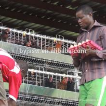 Galvanisierte Hühnerschicht-Käfige für das Legen von Hennen-Batterie-Käfig-Maßen
