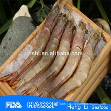 HL002 captura selvagem congelado camarão jumbo