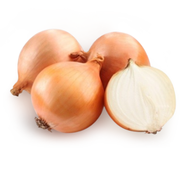 China Onion Prices, Onions In Bulk, Yellow Holland Onions