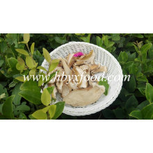 Buy Dried Mushroom Boletus with Good Quality