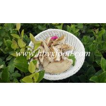 Comprar boletos secos de cogumelos com boa qualidade