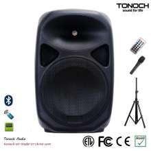 Stable Quality 10 Inches Plastic Speaker System with Competitive Price