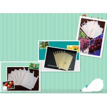 Saco de papel protetor da fruta Anti-UV da À prova de água feito do papel composto do nível superior ou do papel da Polpa da Todo-Madeira