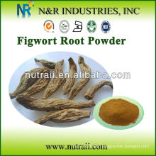 Natural Figwort Root Extract Powder(Scrophularia ningpoensis)