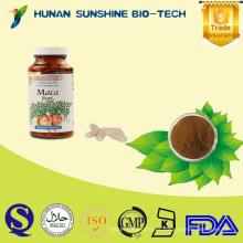 100% polvo de extracto de raíz de maca de Perú / cápsulas de raíz de maca