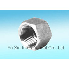 Stainless Steel Fittings Hex Cap (Hexagon Cap Pipe Fitting Cap)