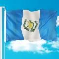 Wholesales Custom Guatemala Flag Polyester Banner