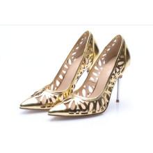 Fashion High Heel Ladies Pointed Toe Shoes (HC 01)