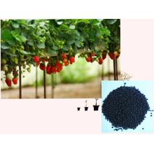Fertilizante microbial de extrato de algas orgânicas NPK orgânico com aminoácido