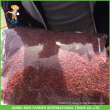Emballage en vrac / coloré Mauvais baies de goji séchées