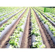 Сделано в Китае, чтобы стабилизировать лучшей цене высокого качества коврик пластиковый биодеградации пленки