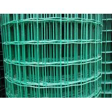 PVC Coated Holland Wire Mesh-PVC-Coated Welded Wire Mesh
