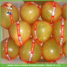 11KG offener Karton-heißer Verkauf Pinghe frischer Honig-Pomelo für Russland-Markt