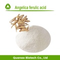 Chinese Angelica Root Extract 98% Ferulic Acid Powder