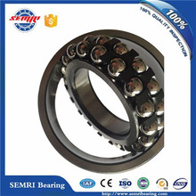 Timken SKF NSK Self-Aligning Ball Bearings (2206)