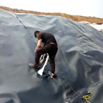 Estanques de cultivo de peces de 2 mm HDPE Geomembrane Liner