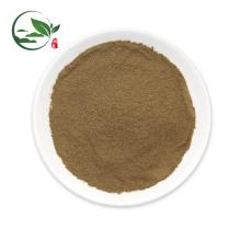 Poudre d'extrait de thé noir instantané