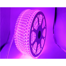 110V de entrada 16 colores de alto brillo 60led / m IP65 a prueba de agua RGB 5050 smd led tira