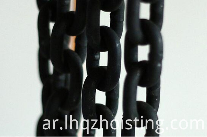 Factory-Supply-DHS-Type-Endless-Electric-Chain (1)