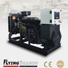 Prix de générateur diesel à faible émission de 20kva 110 / 220V 60HZ Générateur d'énergie à 1 phase vendu au Venezuela