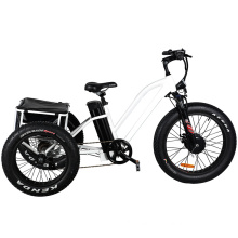 Aluminum Alloy Electric Tricycle E Bike