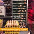 Автоматическая Куриное Яйцо Птицефабрики Яйцо Собирая Машину