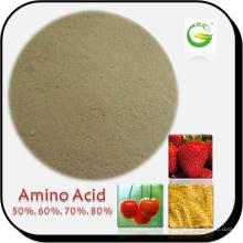 80% de poudre d'acide aminé