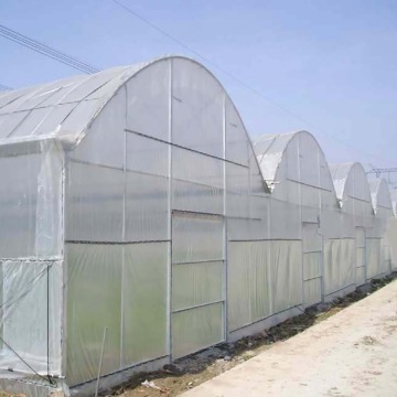 Multi-Span Hydroponic Tunnel Film Greenhouse