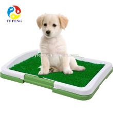 Como ensinar seu cão a ser obediente e bem comportado (treinamento para cães, como treinar um cocô de cachorro)