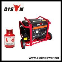 BISON (CHINA) Gás Gasolina Dois-em-um Gerador OEM Gás
