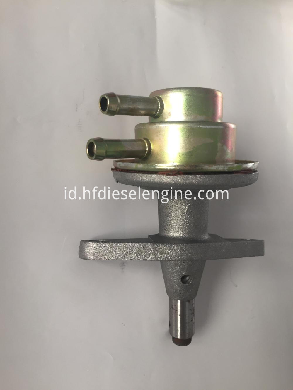 deutz 1011 fuel pump (2)