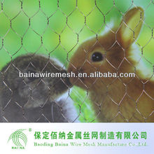 Hexagonal Hole Wire Mesh Mainly for Rabbit cages