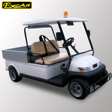 Alarm Light 2 Seater Golf Cart with Small Cargo