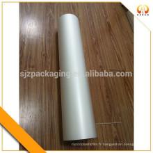 0.1mm Imprimante jet d'encre mat en plastique PET Film Roll ou Sheet for Inkjet