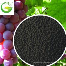 Meilleur engrais organique NPK soluble avec un ajusteur de croissance végétale