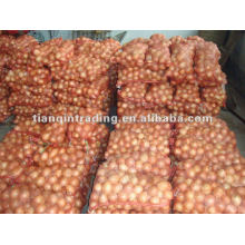 Nouvelle Crop 2012 Red Shallot