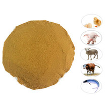 Vitamina Premix Feed Grade Feed Additive Powder