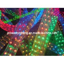 LED Strip Light 5 Wires LED Rope Light (Flat Shape)