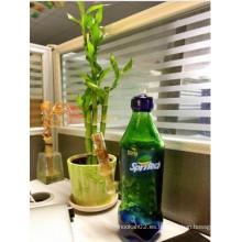 Botella de coque de Hatorade Depósito de aceite de agua de vidrio Tubo de fumar Tubo de agua de cañerías Pipas 14.4mm Junta