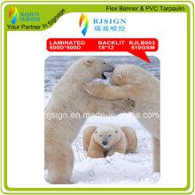 Solvent Digital Printing PVC Backlit Flex Banner