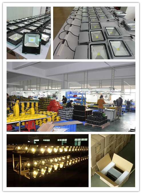 LED FLOOD LIGHT PRODUCT