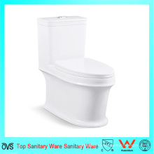 Sanitarios Foshan 4D Flushing Ceramic Toilet