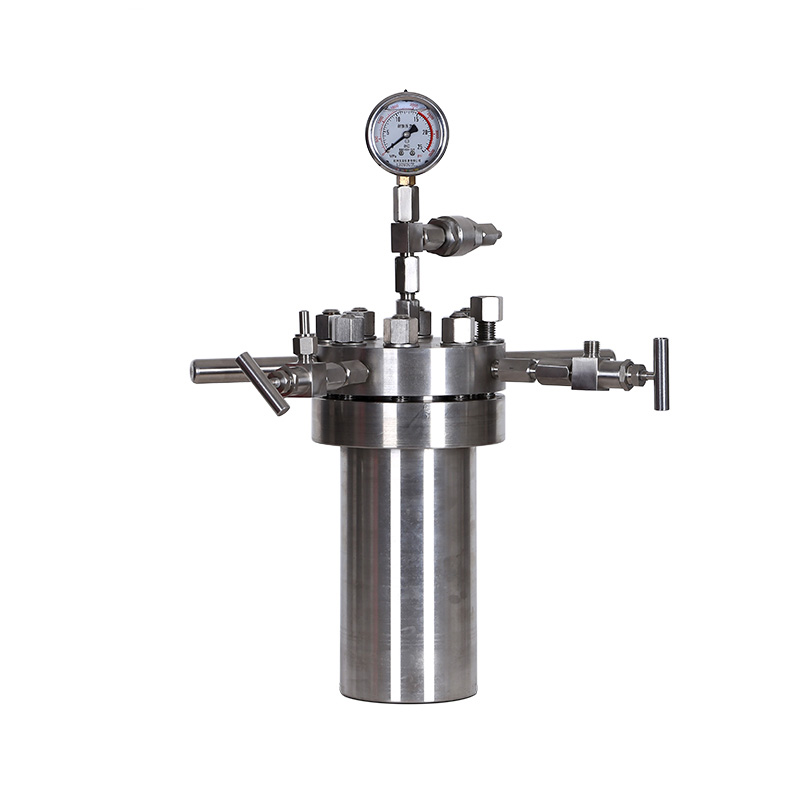 Lab Chemical Teflon Lined Stainless Steel Autoclave