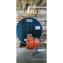 Caldera de vapor de gasoil para molino de tamaño