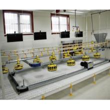 equipo completo de pisos de pollo o de alimentación de tierra completos y automáticos con alimentación y bebida automáticas completas