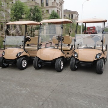 Batteriebetriebene Golf Carts Factory