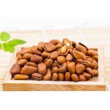 100% new crop original higj quality natural wild pine nuts edible nuts