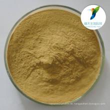 Antibakterieller und analgetischer Inhaltsstoff Kava-Wurzel-Extrakt / Kava-Extrakt-Pulver